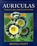 Auriculas: Their Care and Cultivation
