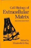 Cell Biology of Extracellular Matrix