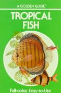 Tropical Fish Golden Guide: A Guide for Setting up and Maintaining an Aquarium for Tropical ...