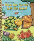 How the Turtle Got Its Shell Tales from Around the World