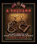 Volcano Beneath the Snow : John Brown's War Against Slavery