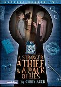 Stranger, A Thief, And A Pack Of Lies Book 2