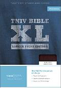 Holy Bible Today's New International Version, Burgundy Bounded Leather, Thinline