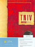 Zondervan TNIV Study Bible, Thumb Indexed