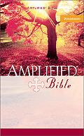 Holy Bible Amplified Version