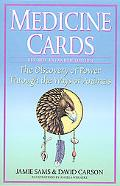 Medicine Cards The Discovery of Power Through the Ways of Animals