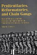Penitentiaries, Reformatories, and Chain Gangs Social Theory and the History of Punishment i...