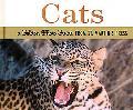 Cats - John Burton - Hardcover
