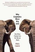 Why Elephants Have Big Ears And Other Riddles from the Natural World