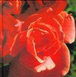 Red (Colour Garden)