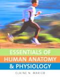 Essentials of Human Anatomy and Physiology
