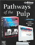 Pathways of the Pulp