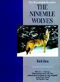 Ninemile Wolves