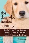 Dog Who Healed a Family : And Other True Animal Stories That Warm the Heart and Touch the Soul