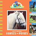 My First Book about Horses & Ponies