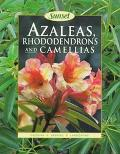 Azaleas, Rhododendrons and Camellias - John R. Dunmire - Paperback