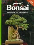 Bonsai:illus.gde.to An Ancient Art