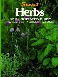 Herbs An Illustrated Guide: How to Grow & Use, A to Z Listing, Garden Plans - Sunset Books, ...