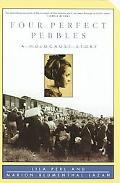 Four Perfect Pebbles A Holocaust Story