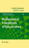 Foundations of Mathematical Neuroscience (Interdisciplinary Applied Mathematics)