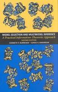 Model Selection and Multimodel Inference A Practical Information Theoretic Approach