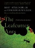Leafcutter Ants : Civilization by Instinct