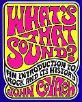 What's That Sound? An Introduction to Rock And It's History
