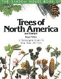 Trees of North America and Europe/a Photographic Guide to More Than 500 Trees