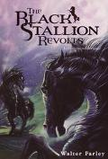 Black Stallion Revolts