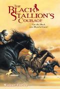 Black Stallion's Courage