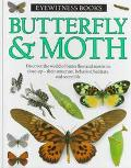Butterfly & Moth - Paul Whally - Hardcover