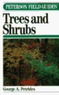 Trees+shrubs
