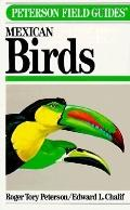 Field Guide to Mexican Birds Field Marks of All Species Found in Mexico, Guatemala, Belize