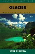 Glacier National Park: A Natural History Guide - David Rockwell - Paperback