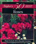Roses Easy Plants for More Beautiful Gardens