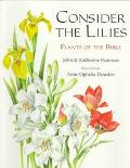 Consider the Lilies: Plants of the Bible - John Paterson - Paperback - REPRINT