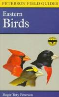 EASTERN BIRDS: FIELD GUIDE (P)