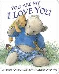 You Are My I Love You: board book