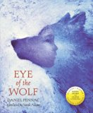 Literacy Evolve: Year 6 Eye of the Wolf