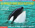 Do Whales Have Belly Buttons? Questions and Answers About Whales and Dolphins