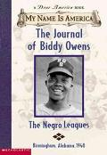 My Name Is America: The Journal of Biddy Owens
