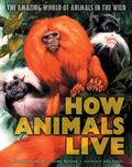 How Animals Live The Amazing World of Animals in the Wild