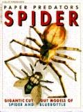 Paper Predators Spider and Fly - Laurence A. Mound - Paperback