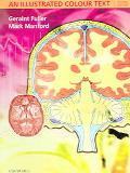 Neurology An Illustrated Colour Text