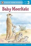 Baby Meerkats (All Aboard Science Reader)