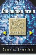 Human Brain A Guided Tour