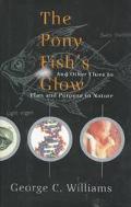 Pony Fish's Glow