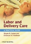 Labor and Delivery Care : A Practical Guide