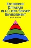Enterprise Database in a Client-Server Environment