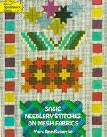 Basic Needlery Stitches on Mesh Fabrics - Mary Ann Beinecke - Paperback